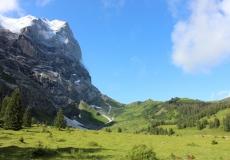 Schwarzwaldalp