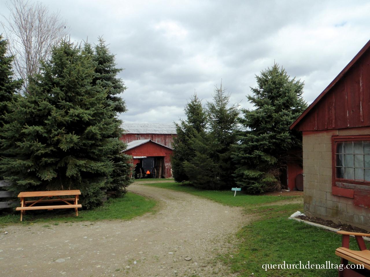 Amish Trail