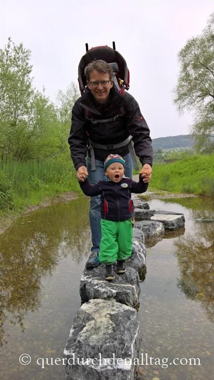 Silberweide am Greifensee