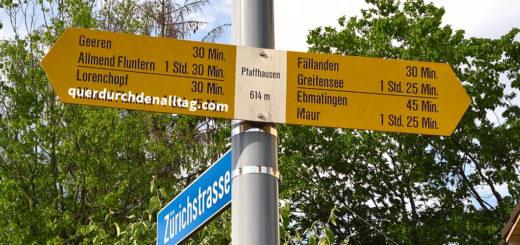 Ein Jahr Pfaffhausen Zürich
