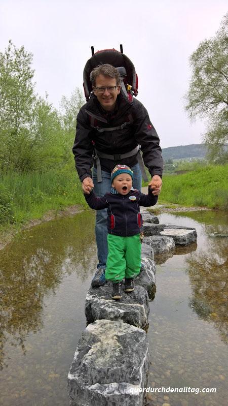 Silberweide Greifensee