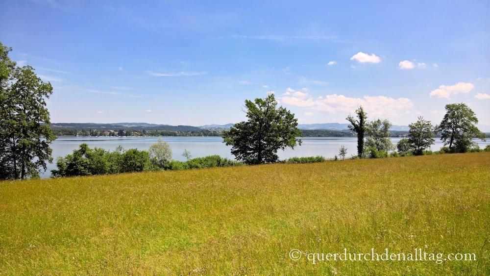 Greifensee Zürich Greifenseelauf