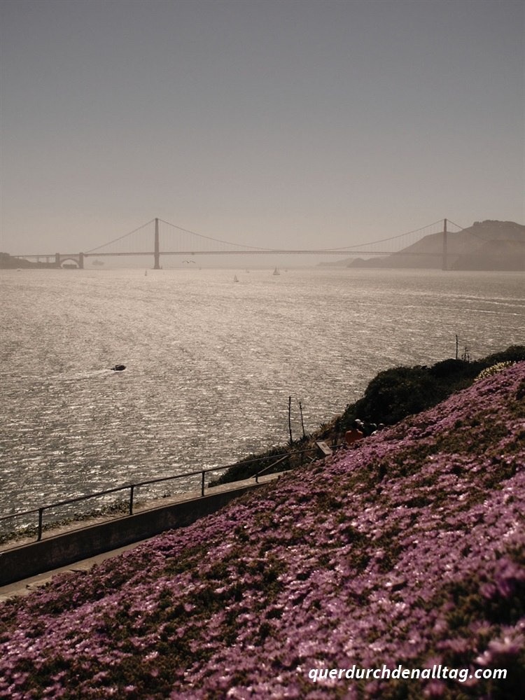 Fotobearbeitung USA San Francisco