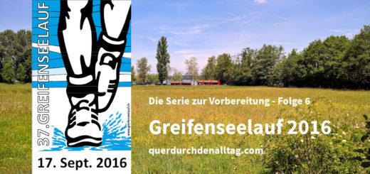 Greifenseelauf Uster 2016