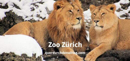 Zoo Zürich