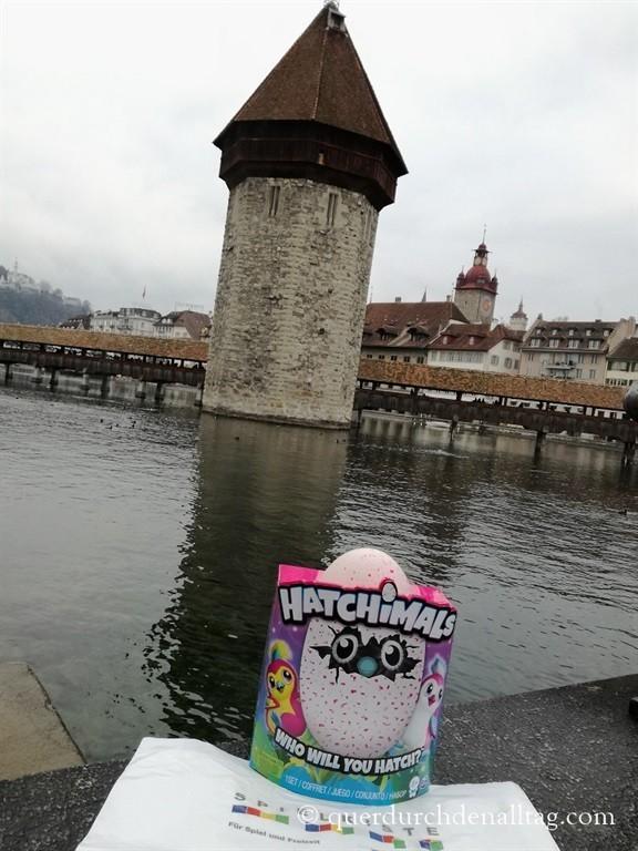 Hatchimals Luzern