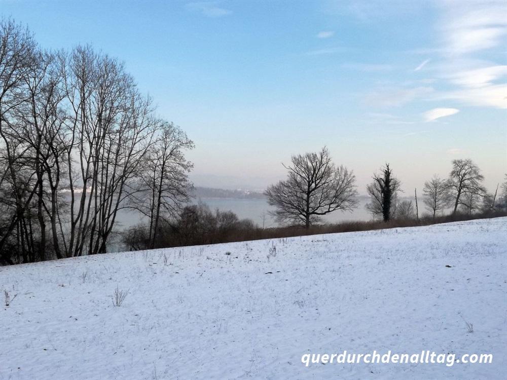 Greifensee Winter