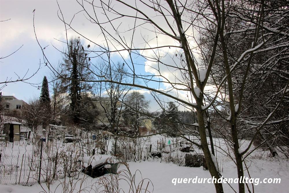 Spuren im Schnee Winter