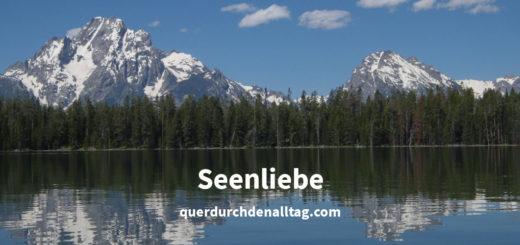 Seenliebe Jackson Lake USA