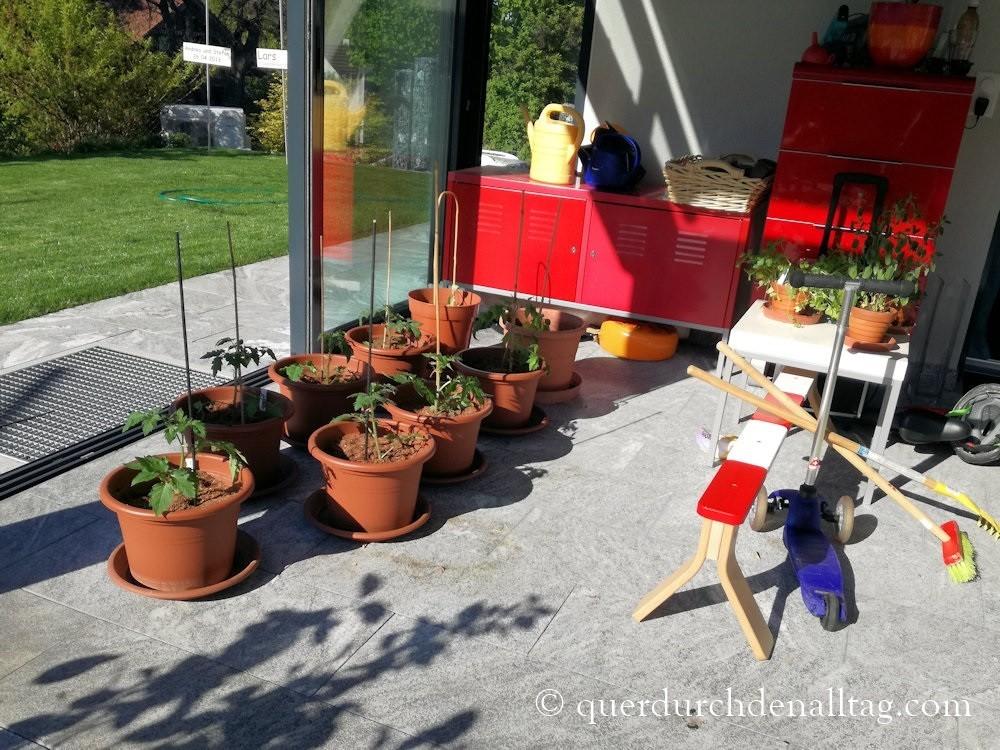 Garten Tomaten Gurken