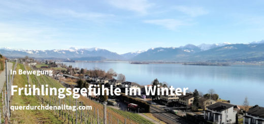 Bewegung Frühlingsgefühle Winter