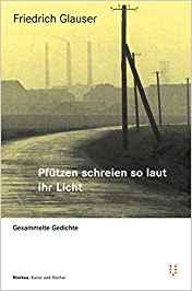Friedrich Glauser Pfützen schreien so laut ihr Licht