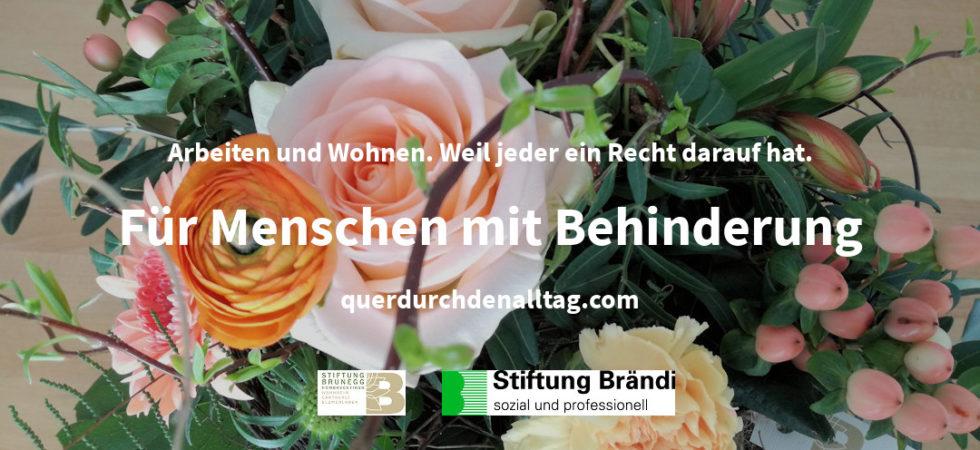 Stiftung Brändi Brunegg Behinderung