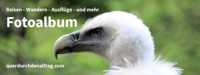Fotoalbum Tierpark Furth im Wald