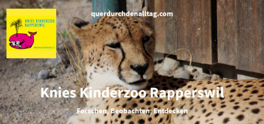 Knies Kinderzoo Rapperswil