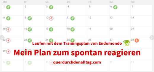 Laufen Trainingsplan Endomondo