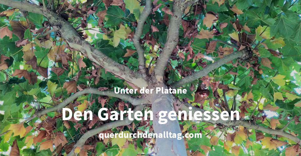Haus Garten Platane Entspannen